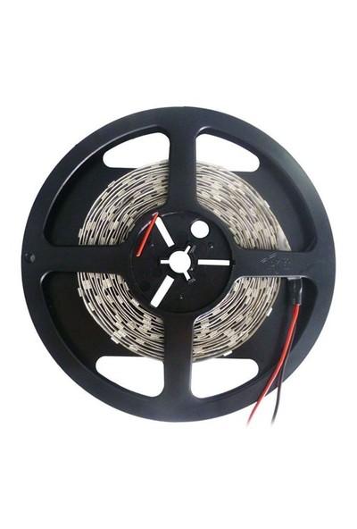Şerit Led Üç Çipli İç Mekan Günışığı Lamptıme 113003 (5 Metre)