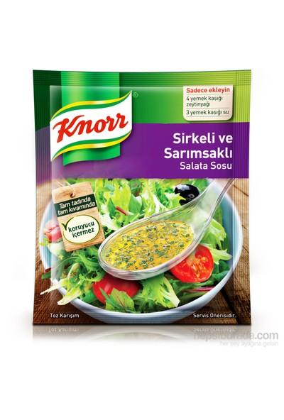 Knorr Salata Sosu Sirkeli Sarımsaklı 50 gr