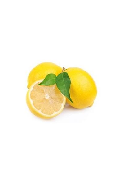 Dalından Koptu Limon (Kg)