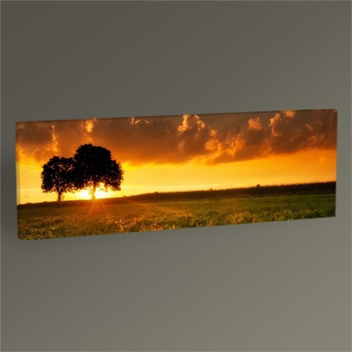 Tablo 360 Trees And Sunset Tablo 60X20