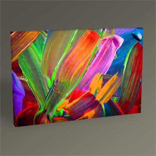 Tablo 360 Renkli Soyut Iı Tablo 45X30