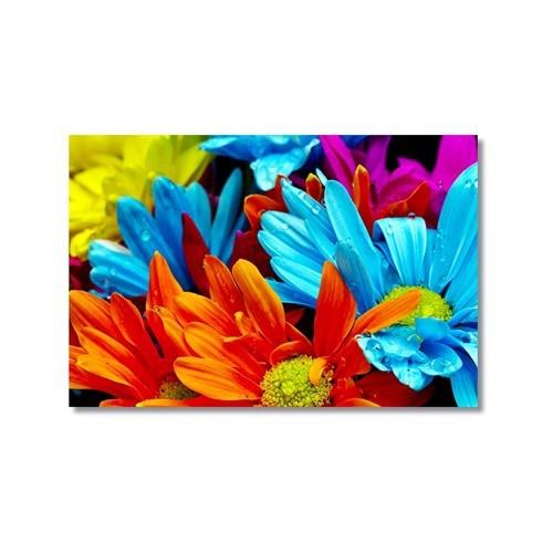 Tictac Renkli Çiçekler 3 Kanvas Tablo - 60X90 Cm