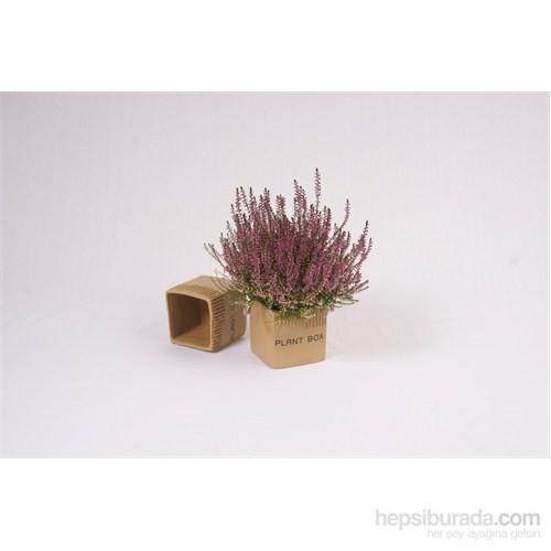 I Love Home Plant Box Saksı Seramik Küçük