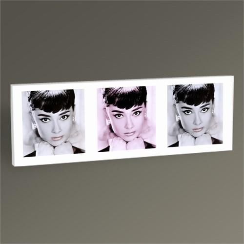 Tablo 360 Audrey Hepburn Tablo 60X20