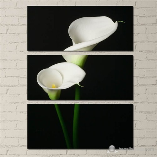 Tabloshop - Modern Two Flower - 3 Parçalı Kanvas Tablo 70X96cm