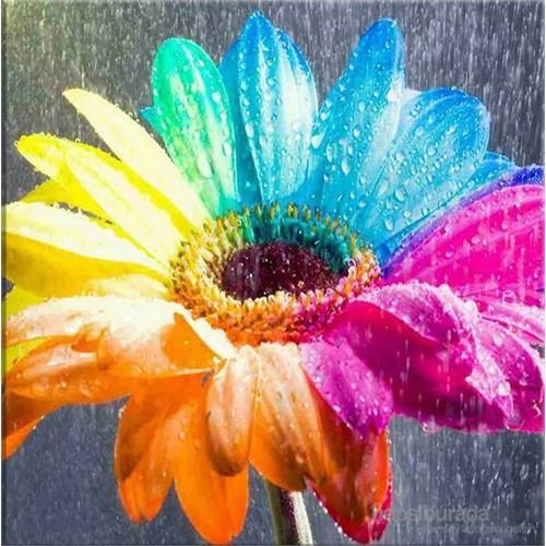 Renkli Çiçek Kanvas Tablo