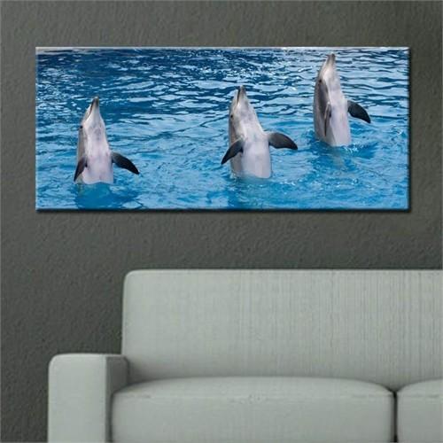 Canvastablom Pnr54 Yunus Balıkları Panoramik Kanvas Tablo
