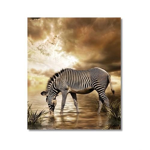 Tictac Su İçen Zebra Kanvas Tablo - 60X90 Cm