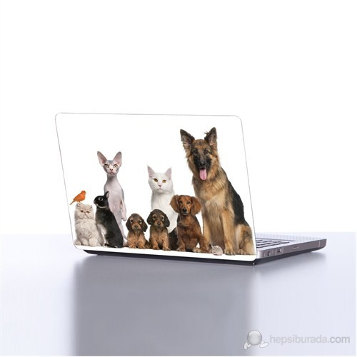 Dekorjinal Laptop StickerDLP98
