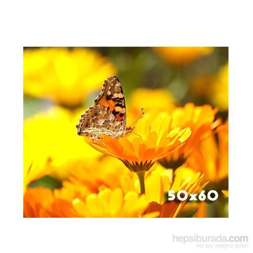 Maslak Foto 50X60 Cm Mat Digital Poster Fotoğraf Baskısı