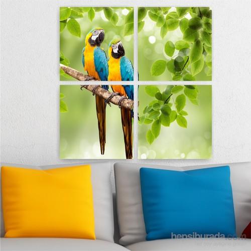 Dekoriza Papağanlar 4 Parçalı Kanvas Tablo 92X92cm