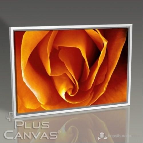 Pluscanvas - Rose Tablo