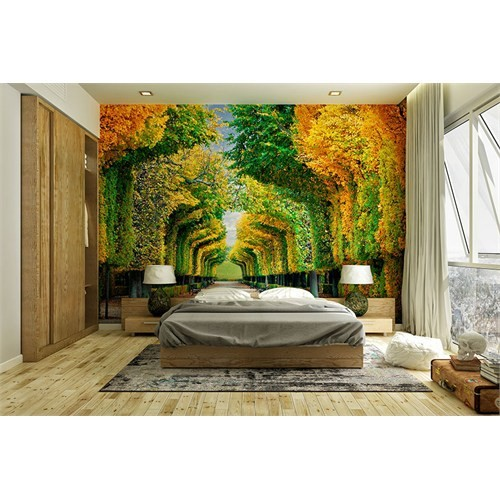Iwall Resimli Ormanda Yürüyüş Duvar Kağıdı 250X180
