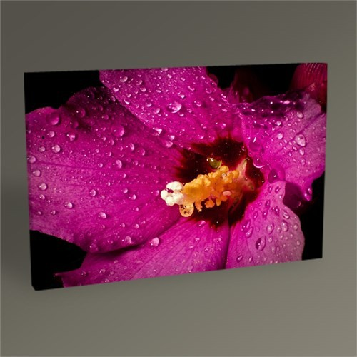 Tablo 360 Wet Purple Flower Tablo 45X30