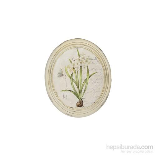Noble Life Beyaz Kök Çiçek Oval Tablo
