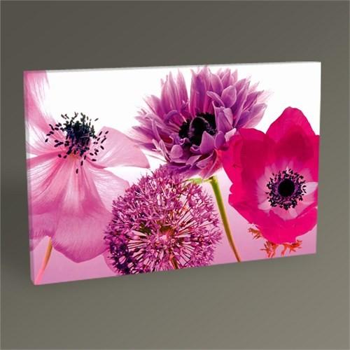 Tablo 360 Purple Summer Tablo 45X30