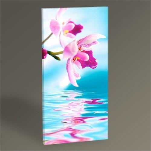 Tablo 360 Orchid Flower Iı Tablo 60X30