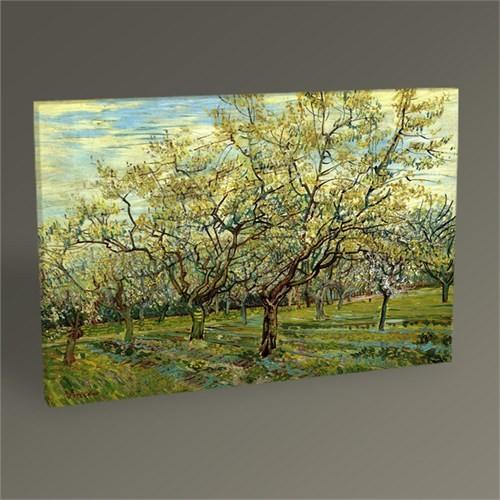 Tablo 360 Vincent Van Gogh Beyaz Meyve Bahçesi Tablo 45X30