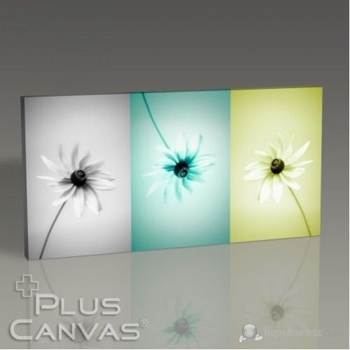 Pluscanvas - Three Daisy Tablo