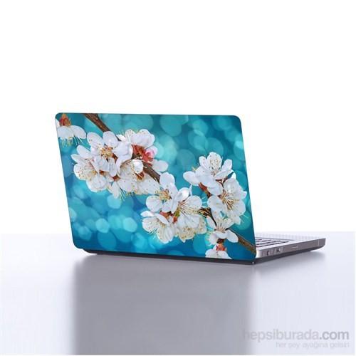 Dekorjinal Laptop Stickerdkorjdlp171
