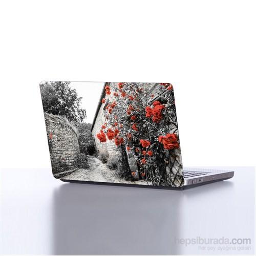 Dekorjinal Laptop Stickerdkorjdlp184