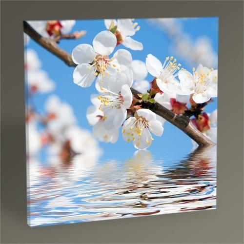 Tablo 360 Spring Beauty Tablo 30X30