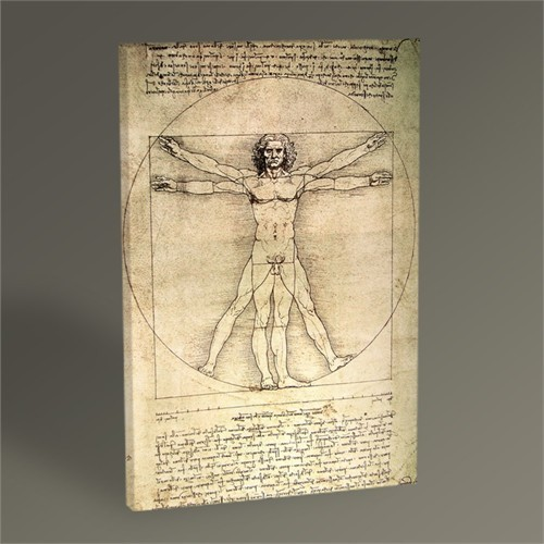 Tablo 360 Leonardo Da Vinci The Vitruvian Man 45X30