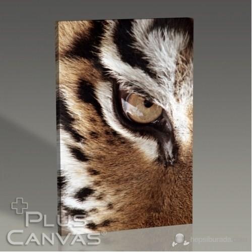 Pluscanvas - Eye Of The Tiger Tablo