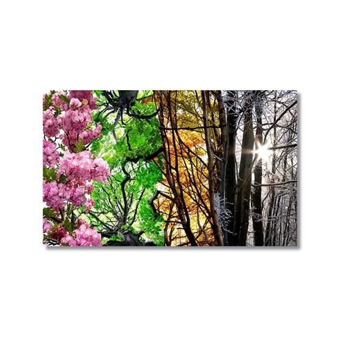 Tictac Mevsimler Kanvas Tablo - 50X75 Cm