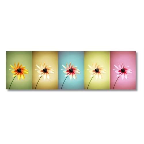 Tictac Renkli Çiçekler Kanvas Tablo - 30X120 Cm
