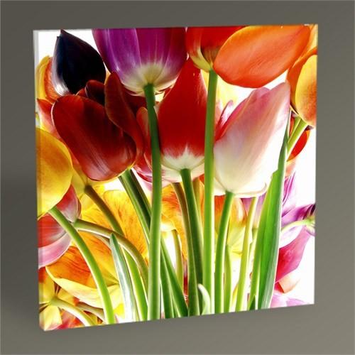 Tablo 360 Güzel Bahar Çiçekleri Tablo 30X30