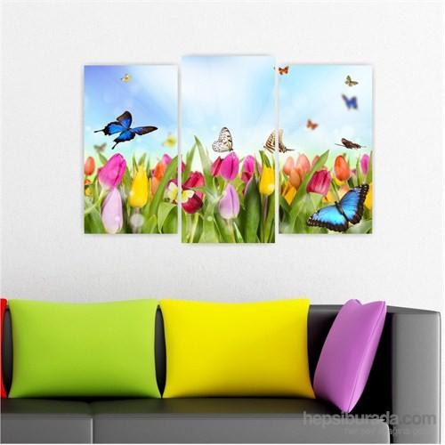 Dekoriza Renkli Laleler & Kelebekler 3 Parçalı Kanvas Tablo 80X50cm