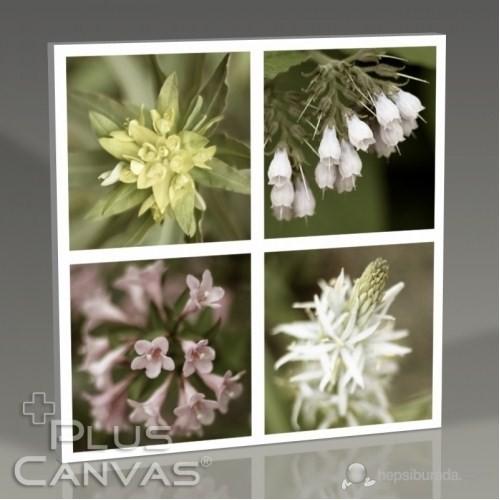 Pluscanvas - Quattro Flowers Iı Tablo