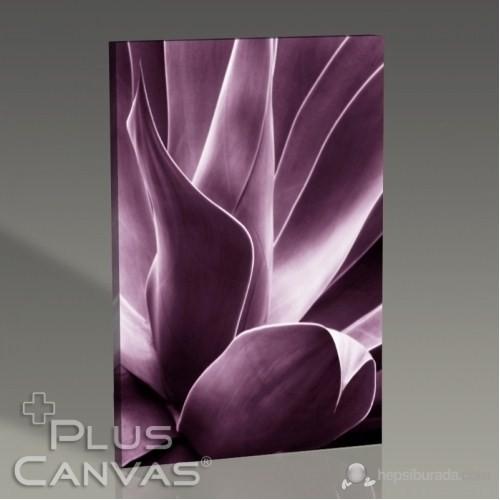 Pluscanvas - Flora Iıı Tablo