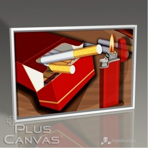 Pluscanvas - Veronica Moe - Cigarette And Lighter Tablo