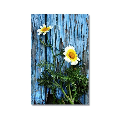 Tictac Çiçekler Kanvas Tablo - 50X75 Cm