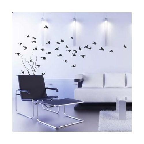 Birka Grafiti - Eğlenceli Kuşlar