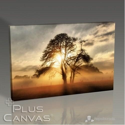Pluscanvas - Sunlights Tablo