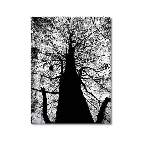 Tictac Uzun Ağaç Kanvas Tablo - 40X60 Cm