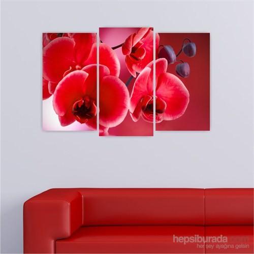 Dekoriza Kırmızı Orkideler 3 Parçalı Kanvas Tablo 80X50cm