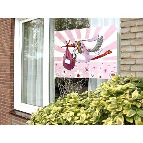 Parti Paketi Leylek Getirdi Pembe Cam Posteri