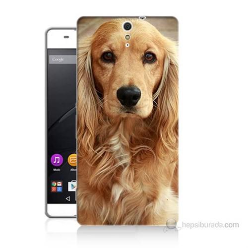 Teknomeg Sony Xperia C5 Köpek Baskılı Silikon Kılıf