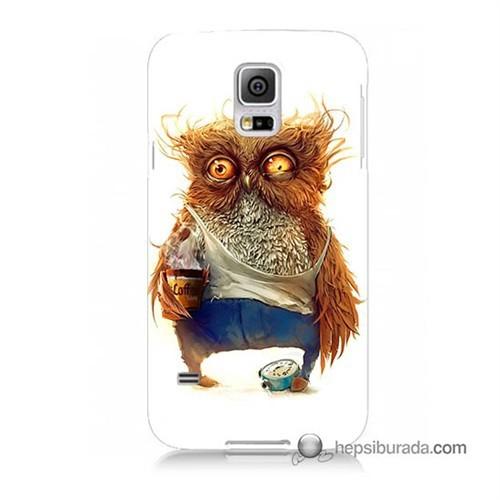 Teknomeg Samsung Galaxy S5 Kapak Kılıf Miskin Baykuş Baskılı Silikon