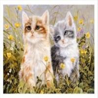 Art Liva Kediler Sayılarla Boyama Tuval Hobi Seti 40 x 50 cm