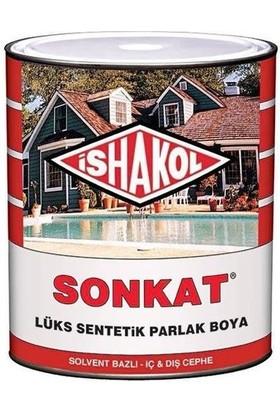 İshakol 15 Lt. 30415 Sütlü Kahve Ishakol Sonkat Boya