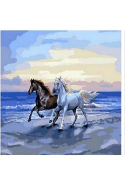 Art Liva Atlar ve Deniz Sayılarla Boyama Tuval Hobi Seti 40 x 50 cm
