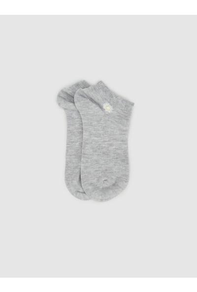 LTB Rıneko Kadın Aksesuar Çorap