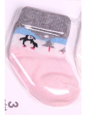Breeze Kız Bebek Yenidoğan Çorap 3 Lü Desenli Karışık Renk