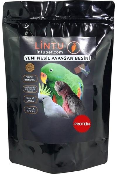 Lintu Avustralya Yüksek Protein Papağan Besini - 1 KG