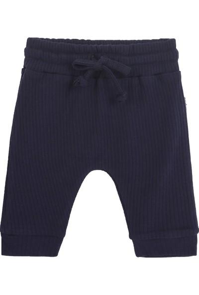Antebies Lacivert Pantolon